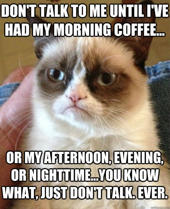 grumpy cat coffee meme